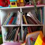 Lucy's Bookshelf – Bookshelves Abound = #Shelfie 04