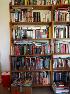 Fiction Bookshelf on the upstairs landing