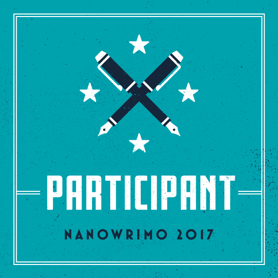 NaNoWriMo 2017 – What Should I Write?