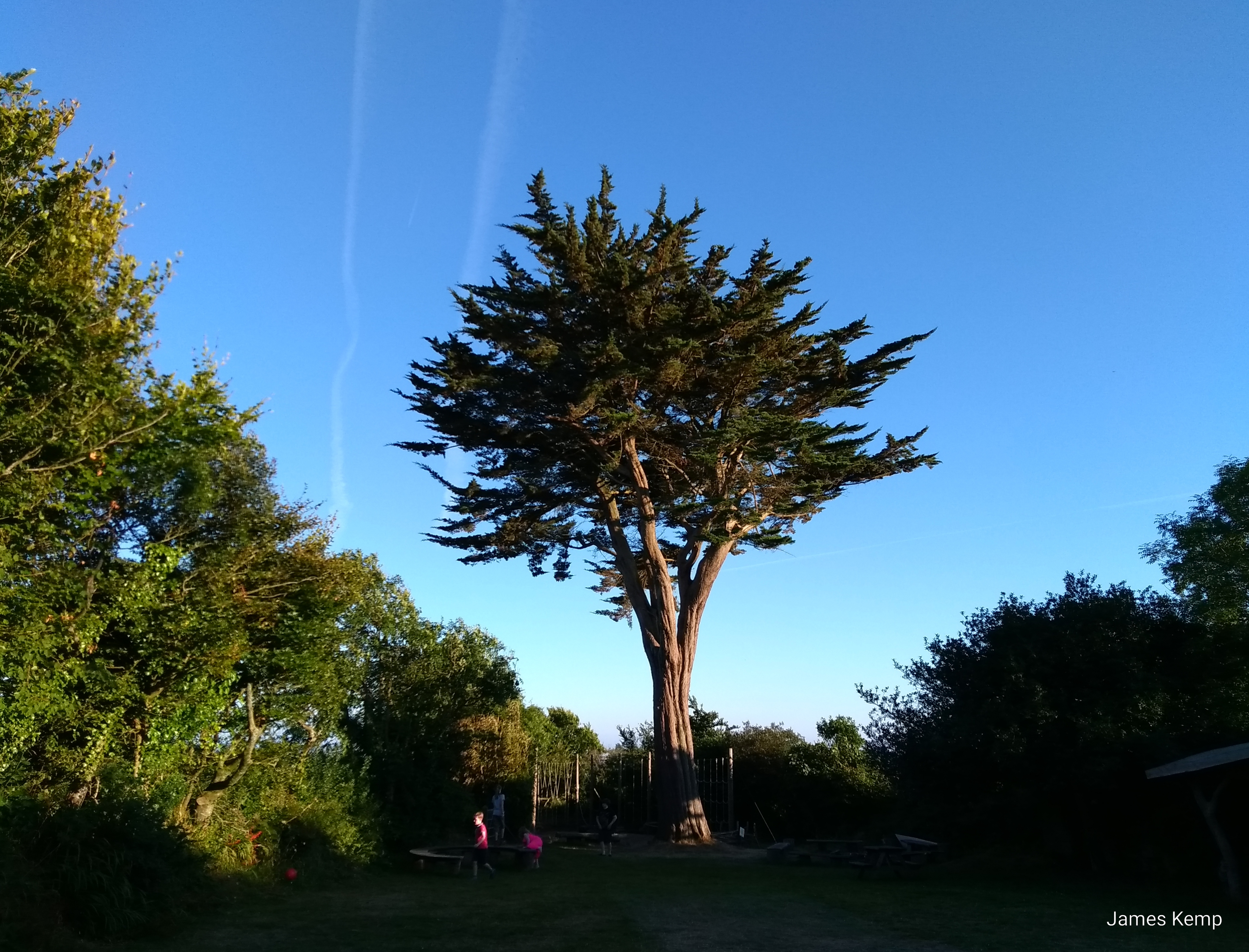 The back garden in the real family holidays centre in Slapton, Devon (photo: James Kemp)